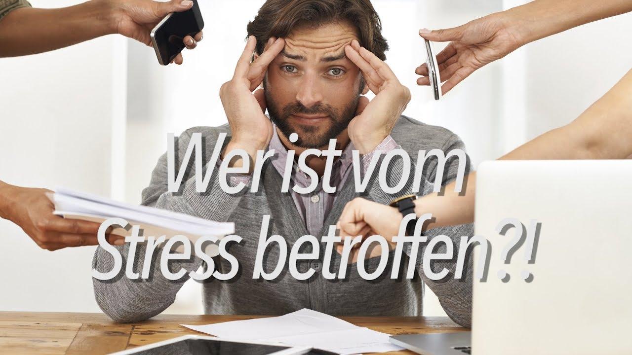 Wer ist vom Stress betroffen?